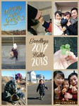 Collage 2018-01-01 14_11_47.jpg